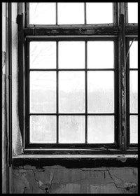 Window B&W Poster