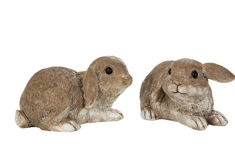 Kanin - Vädur