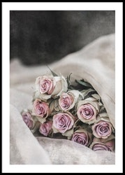 Pink Roses - Poster