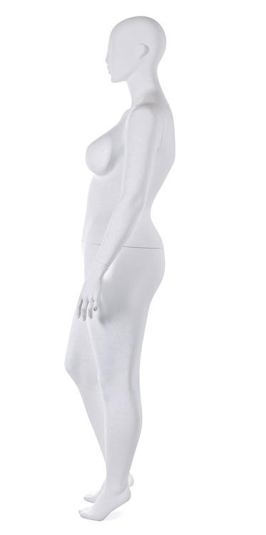 Eva 22