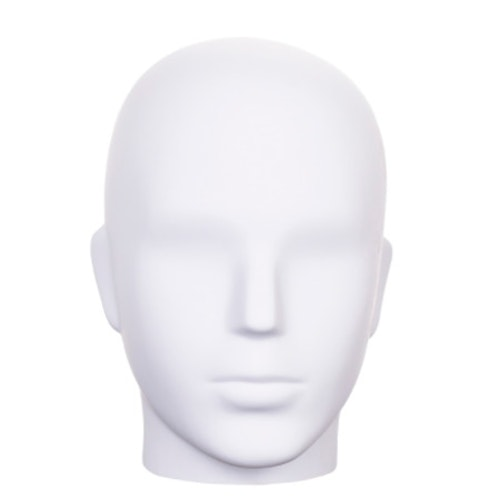 Huvud herr H01M