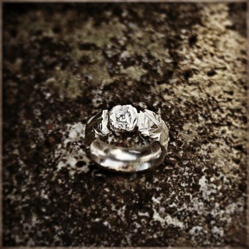 FORTUNA silverring