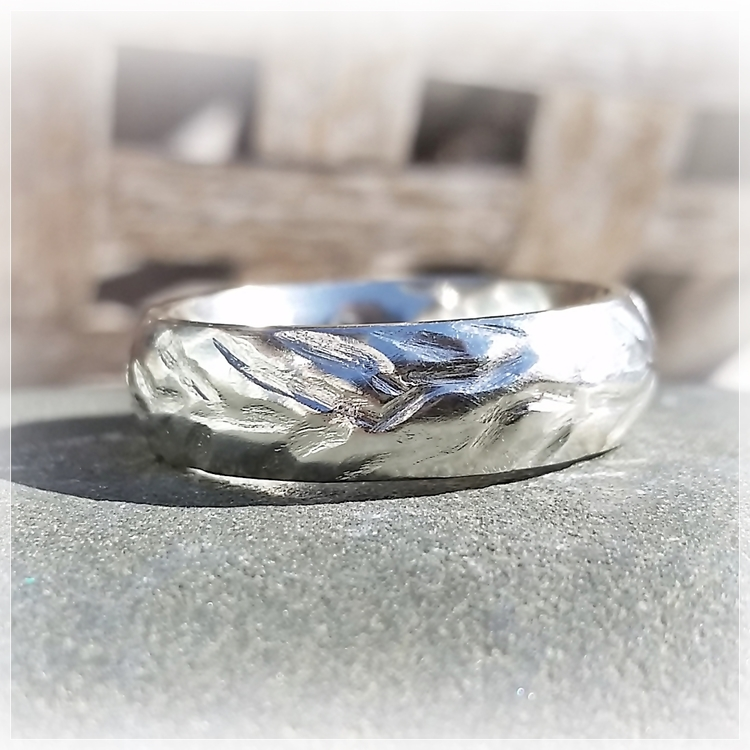 EVIG silverring