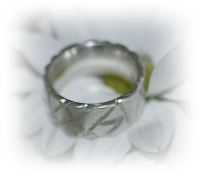 EIR silverring