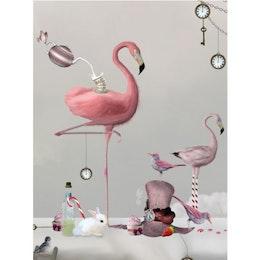 Flamingo Poster 30x40