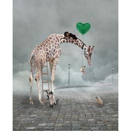 Giraffe Kids Poster 30X40