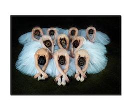 Ballerinas, Poster