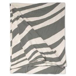 Zebra Titanium, Pläd