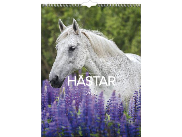 Stora Hästkalendern -1776  (2021)
