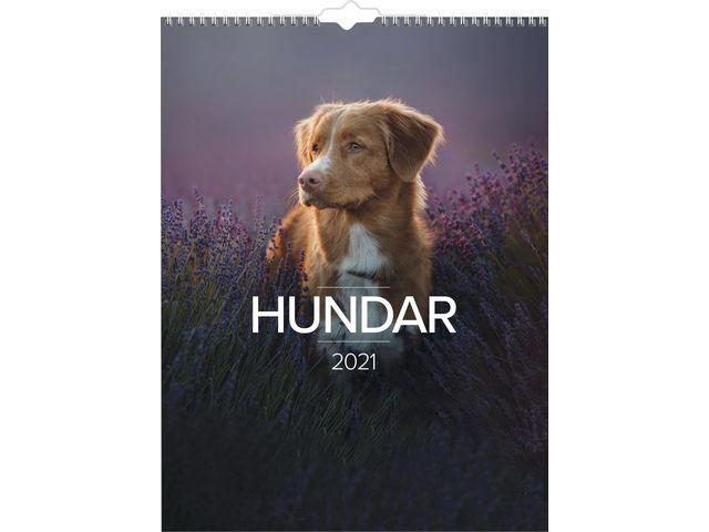 Stora Hundkalendern -1777  (2021)