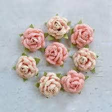 Angel rose Coral