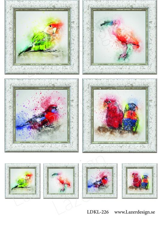 LDKL226 Vilda fåglar