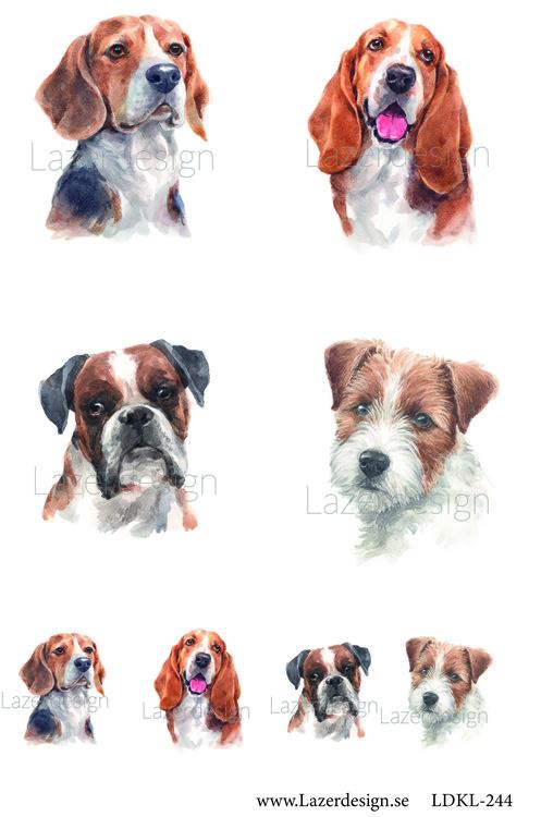 LDKL-244 Hundar 3