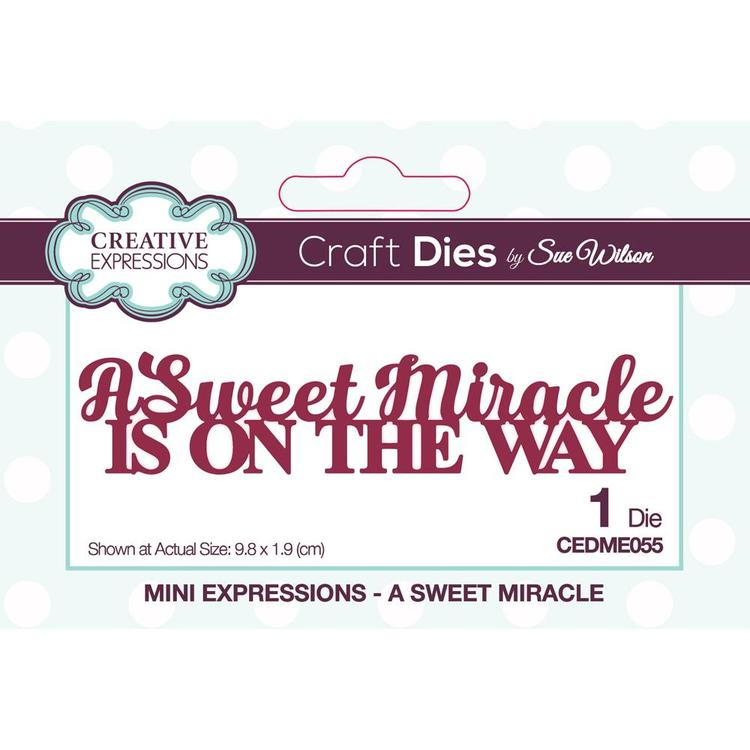 Creative Expressions • Sue Wilson a sweet miracle dies