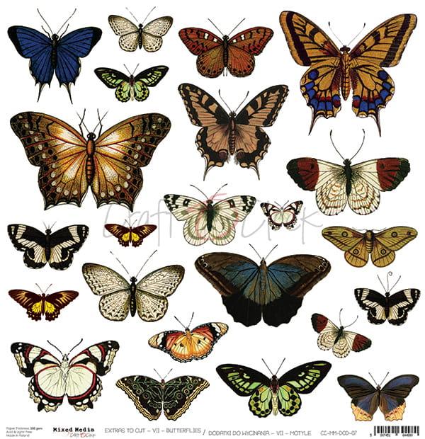 Klippark Butterflies