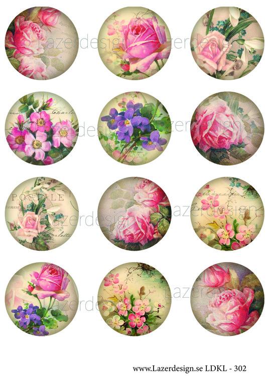Ldkl302 Blommor