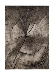 Boro Tree Grå - Maskinvävda Mattor