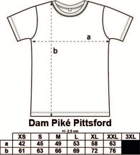 Dam Piké Pittsford med tryck