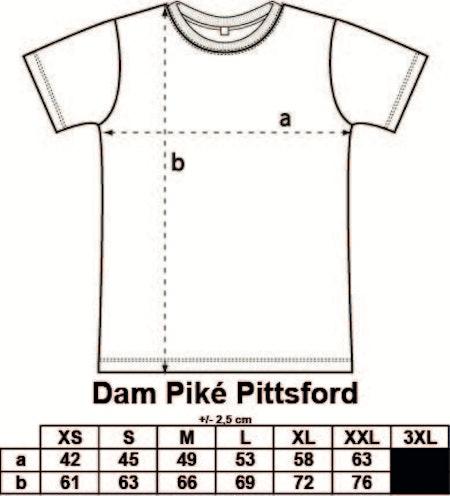 Dam Piké Pittsford