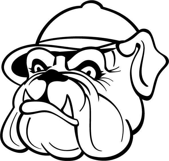 305. Bulldog med keps