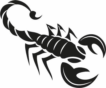 306. Scorpion