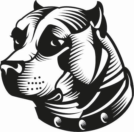 308. Stafford Terrier