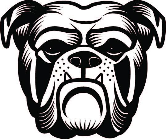 316. Bulldog huvud