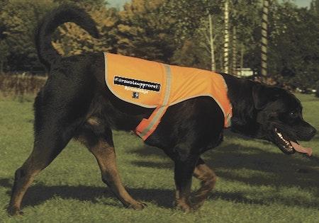"""Reflexväst Hund """"Förskoleupproret!"""""""
