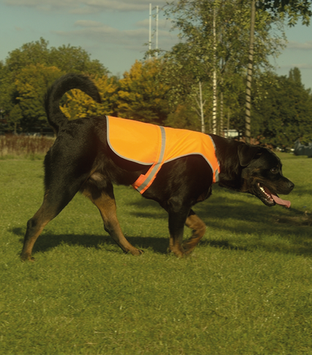 Reflexväst Hund