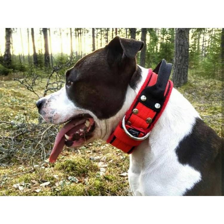 Grip Red - brett rött hundhalsband med handtag