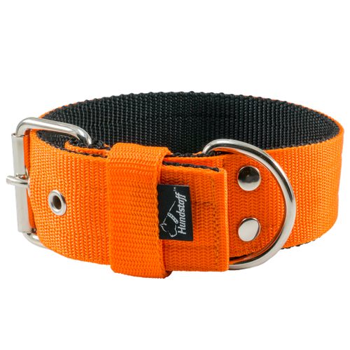 Energetic Orange - 5cm brett orange hundhalsband