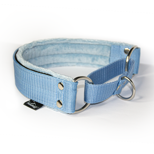 Baby blue martingale - half choke without chain