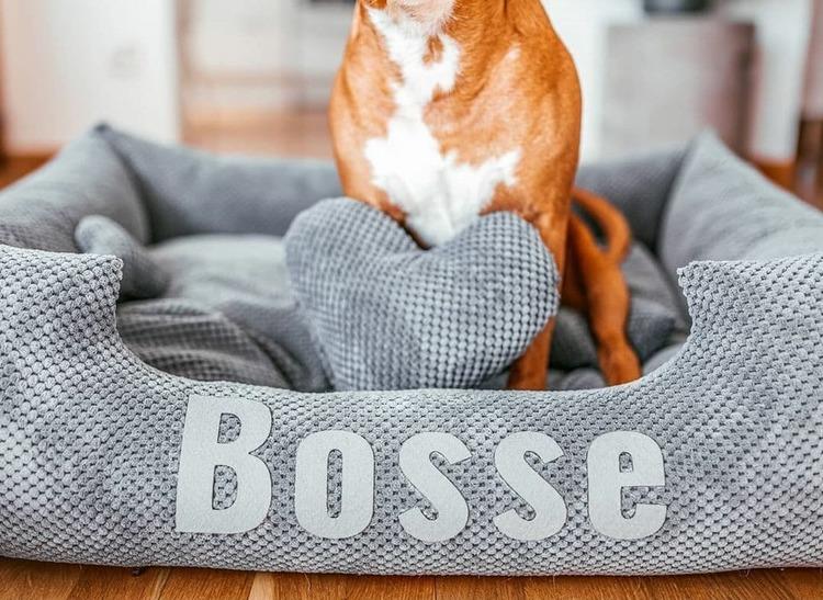 Platinum grey - grå hundbädd med namn