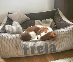 Platinum beige & brown - beige & brun hundbädd med namn