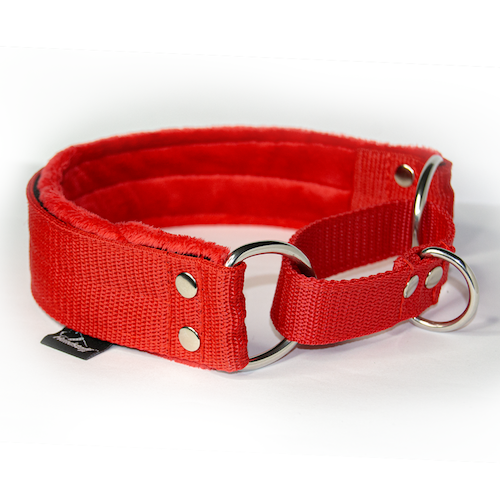 Red martingale - red half-choke without chain