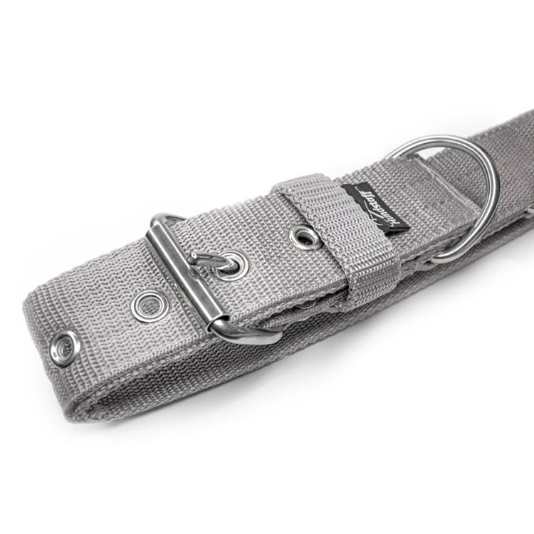 Active Grey 4cm brett grått hundhalsband