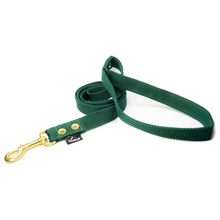 Leash Forest Green - Golden edition