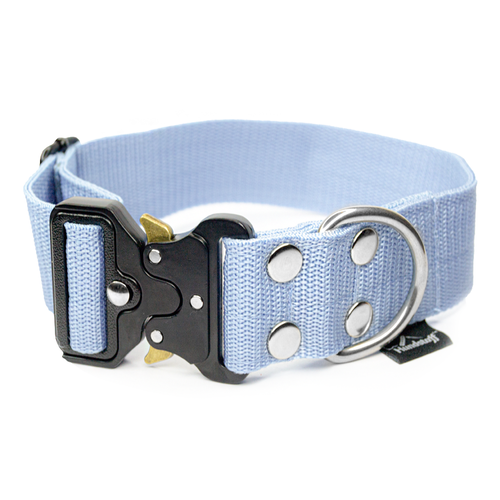 Extreme Buckle Baby Blue - light blue collar with black buckle