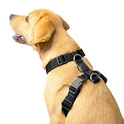 Easy Comfort Black - svart hundsele