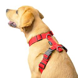 Easy Comfort Red - röd hundsele
