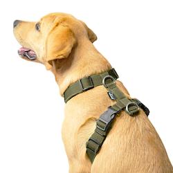 Easy Comfort Khaki - khaki hundsele