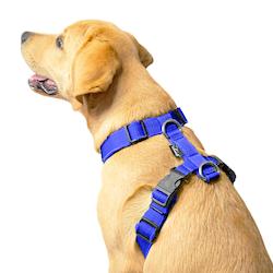 Easy Comfort Blue - blå hundsele