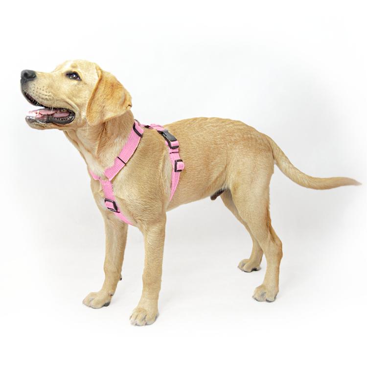 Easy Comfort Baby Pink - ljusrosa hundsele