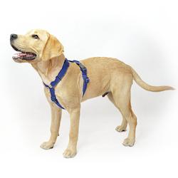 Easy Comfort Navy Blue  - mörkblå hundsele
