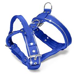 Dynamic Safe Blue - blå sele med reflex