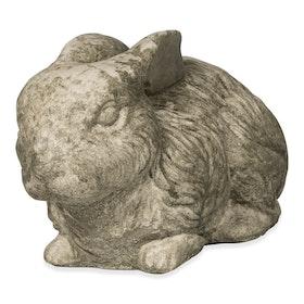 Kanin i betong