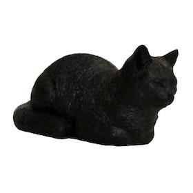 Vilande katt Svart