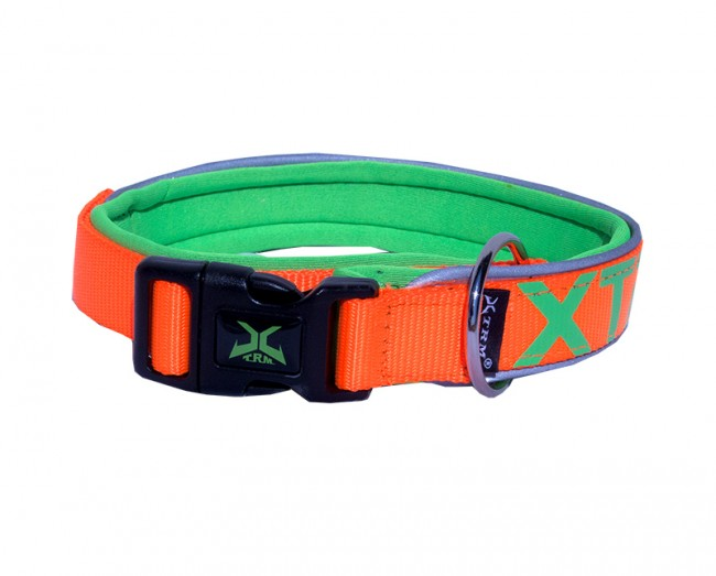 Hundhalsband XTRM Orange/Grön