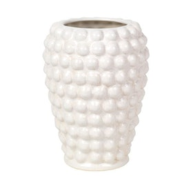 """Vas """"Dotty"""" Från Brostecph"""