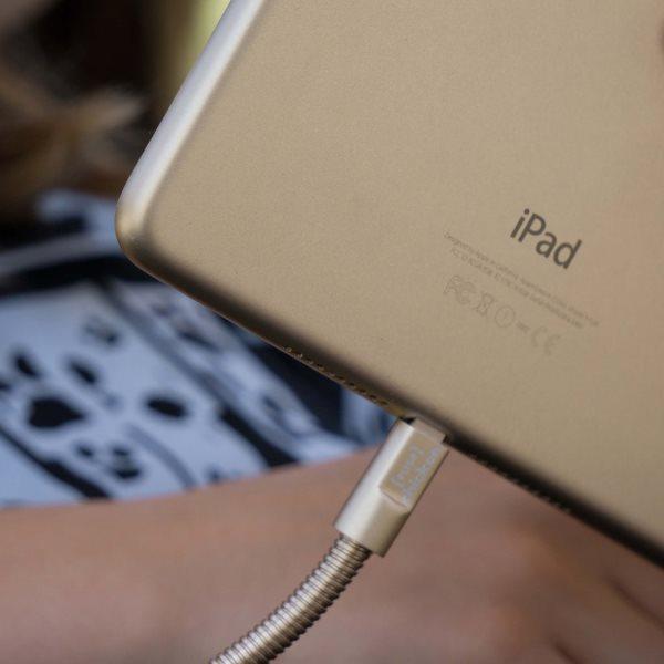 Fuse Chicken Titan plus Lightning 150cm guld laddar iPad